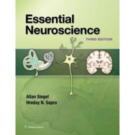 Essential Neuroscience, 3e